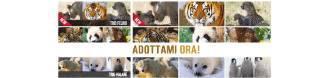 Aderisci alla Campagna Salva animali di WWF