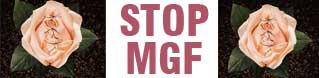 6 febbraio: Giornata Mondiale per l'eliminazione delle mutilazioni genitali femminili (Mgf).